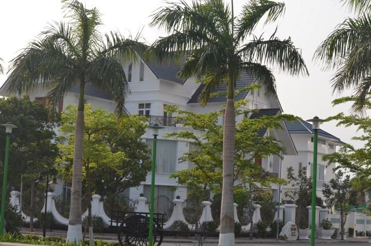 Bán đất biệt thự Đảo Xanh, Hòa Cường, Hải Châu Đà Nẵng